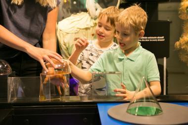 Toetusprogramm NUKU muuseumi külastuseks