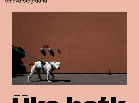 Teatrivalgustaja Targo Miilimaa tänavafotograafia Nukuteatrimuuseumis